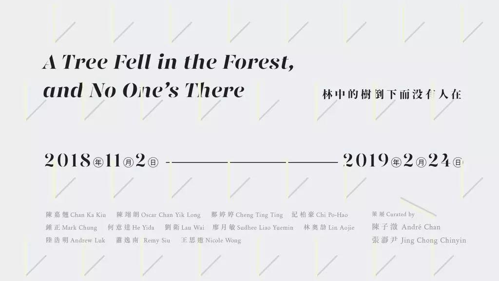 陸浩明在上海當代藝術博物館展出