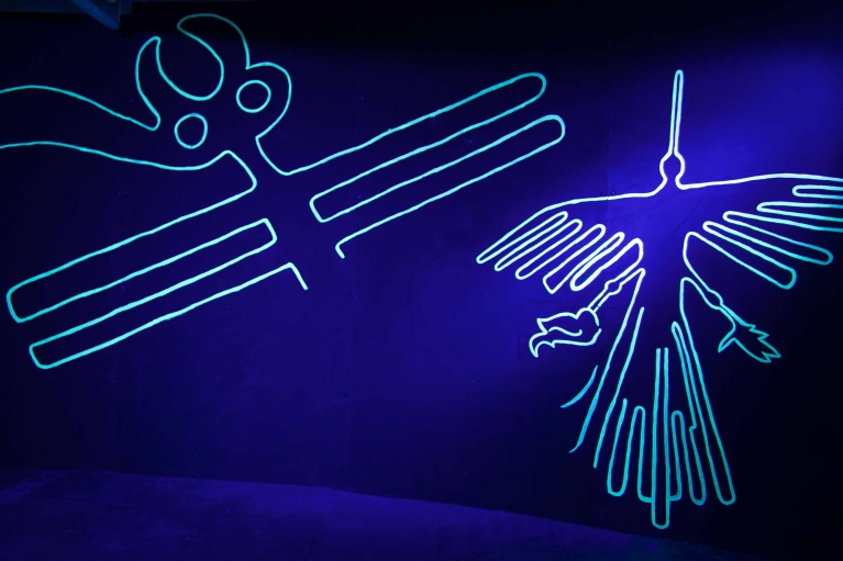 Liang Ban, Neon Wilderness: Nazca Lines (Detail), 2018. Metal bars, paint, fluorescent powder, dimensions variable.