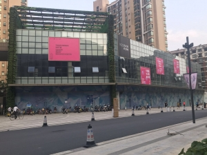 Wang Xin's Solo Exhibition