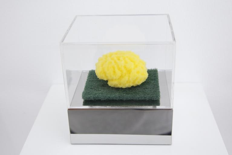周文斗, 海绵 - 大脑, 2006, 海绵, 9 x 6 x 4.5厘米
