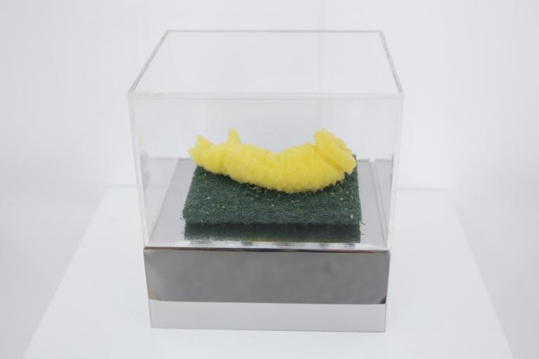 周文鬥, 海綿 - 胳膊, 2006, 海綿, 9 x 6 x 4.5厘米