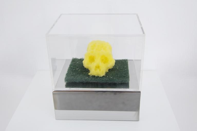 周文斗, 海绵 - 骷髅, 2006,海绵,不锈钢,亚克力展示柜, 9 x 6 x 4.5厘米