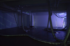 Installation view of Wheezing
