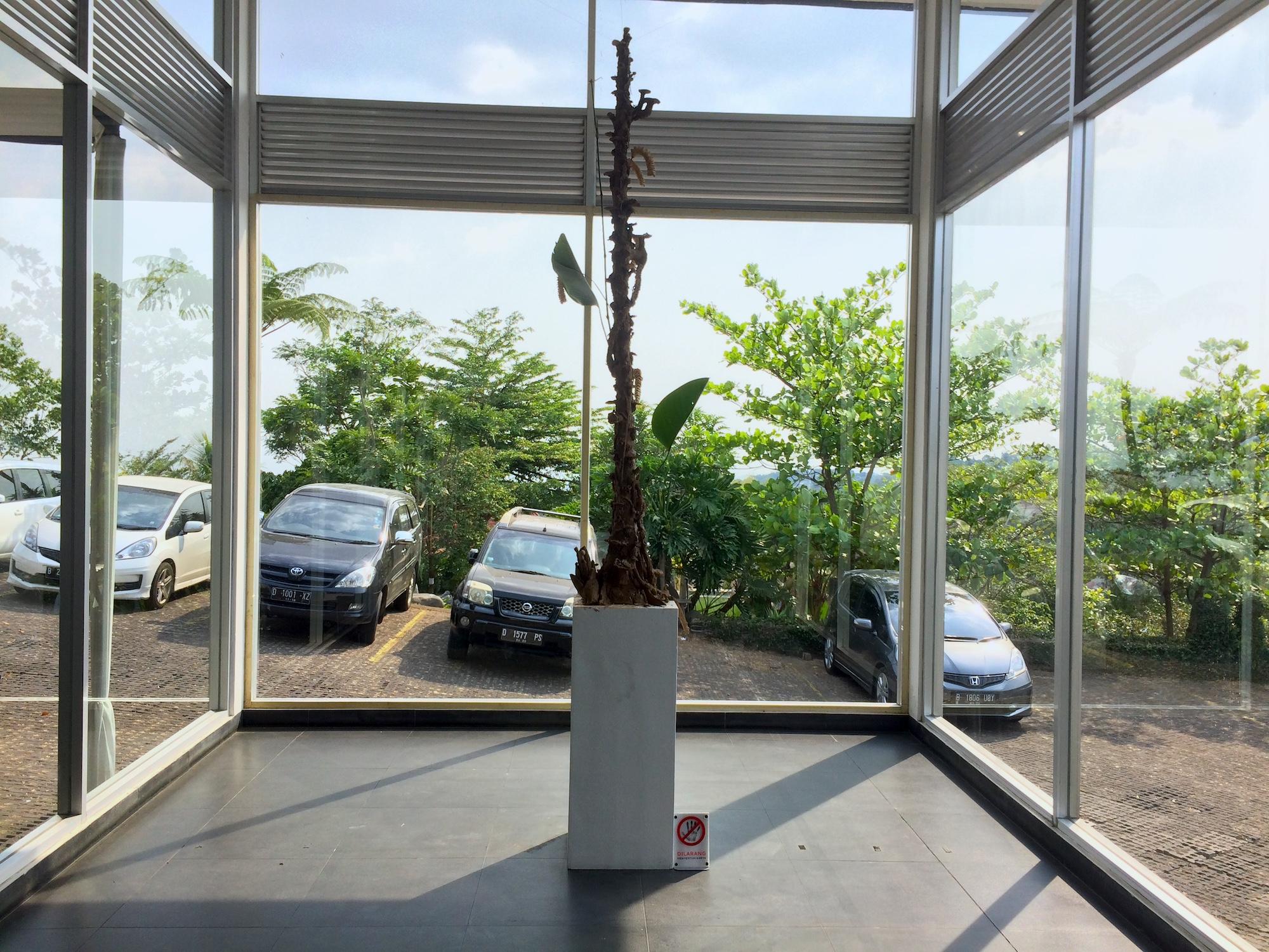 Richard Streitmatter-Tran's new exhibition at Lawangwangi Creative Space